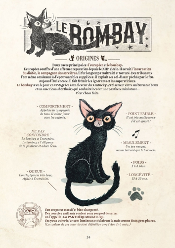 guillaume bianco,billy brouillard,comptines malfaisantes,histoires,chats,histoires de chats,bombay,maine coon,sphynx,persan,siamois,gothique,bd,contes