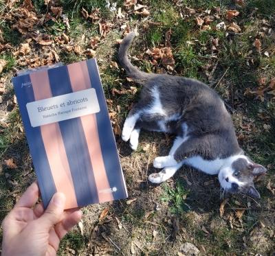 rendez-vous poétique,poésie,natasha kanapé fontaine,bleuets et abricots,innu,amérindien,mois québécois