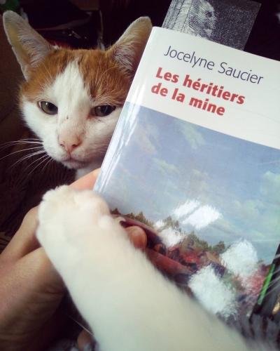 littérature québécoise,québec en novembren famille,mine,fratrie,décès,mystère,roman choral