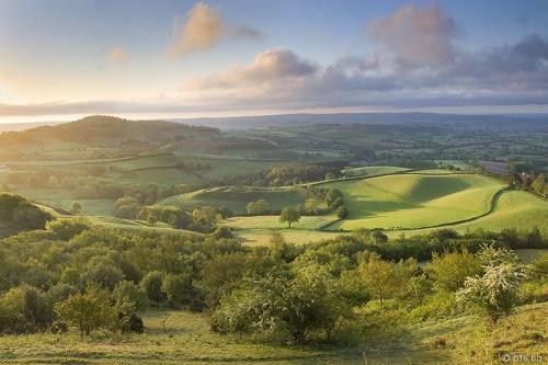 Dorset 1.jpg