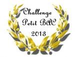 challenge petit bac 2013.jpg
