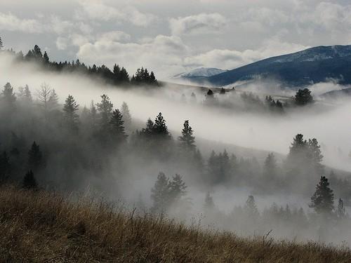 Yaak Valley.jpg